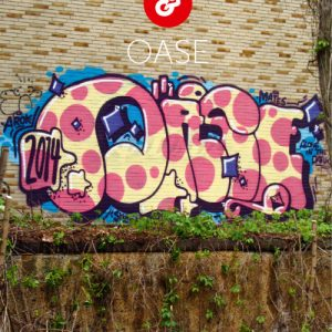 vielfalltag artistz Graffiti (1)