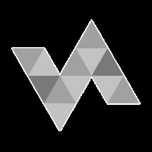 vielfalltag logo grau